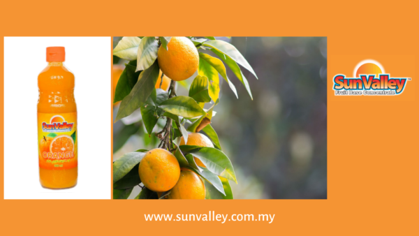 Fruit Juice Malaysia